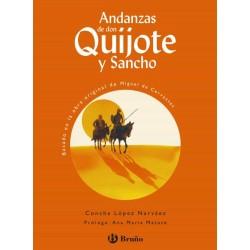 Andanzas de don quijote y...