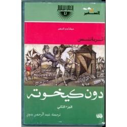 Don Quijote en árabe (Zulma)