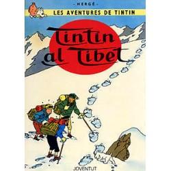 Tintin al Tibet (catalán)